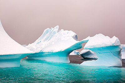 White melting icebergs, Antarctica - p343m2025604 by Ashley Cooper