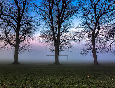 Bare trees and goalpost in misty park at sunrise - p429m1418140 by David Cleveland