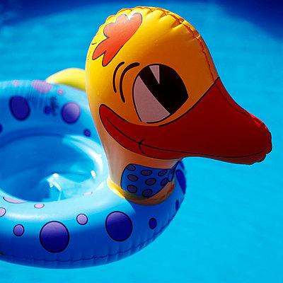 Schwimmente - p3050103 von Dirk Morla