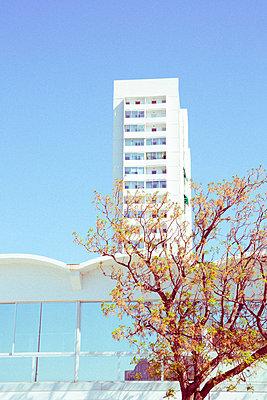 Blick auf Hochhaus - p432m1590380 von mia takahara