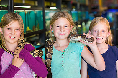 Caucasian girls playing with snake in pet store - p555m1410487 by Marc Romanelli