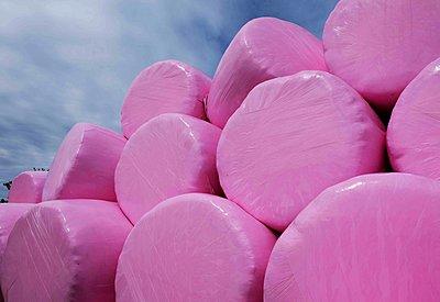 Strohballen in pinkfarbener Folie - p1229m2206409 von noa-mar