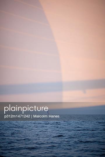 p312m1471242 von Malcolm Hanes