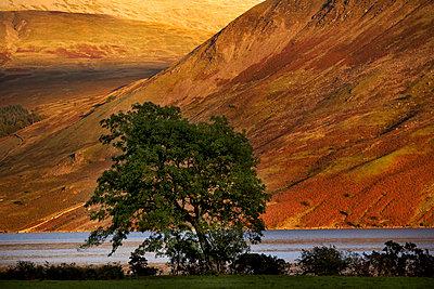 Landschaft - p1205m1464496 von Horst Friedrichs