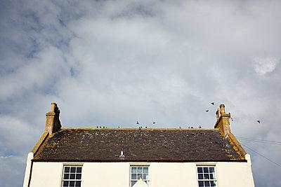 Haus an der schottischen Küste - p1145m1558740 von Kerstin Lakeberg