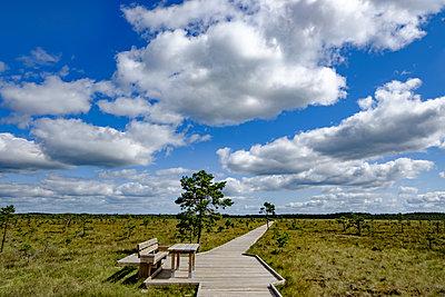 Hölzerner Weg durch die Moorlandschaft Dumme Mosse - p1463m2296420 von Wolfgang Simlinger