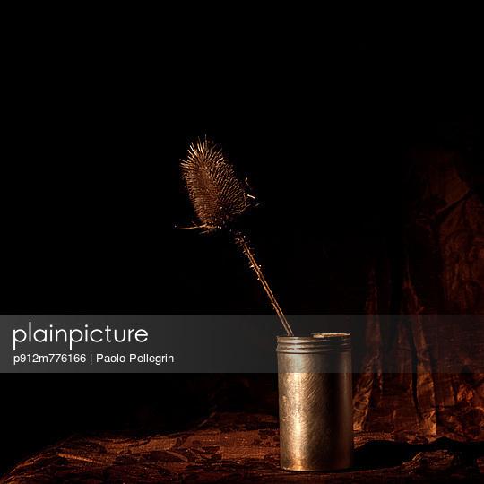 p912m776166 von Paolo Pellegrin