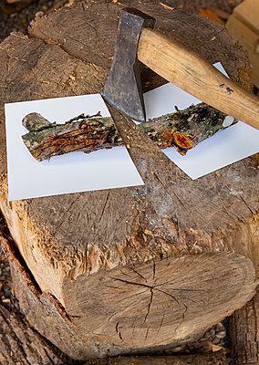 Chopping wood - p1017m2203655 by Roberto Manzotti