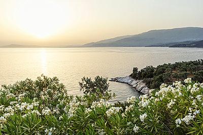 Greece, Thessalia, Lefokastro - p300m1580706 von Maria Maar
