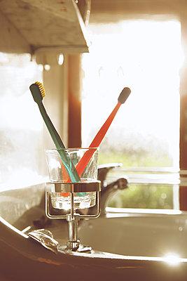 Zahnbürsten im Sonnenlicht - p606m1217632 von Iris Friedrich
