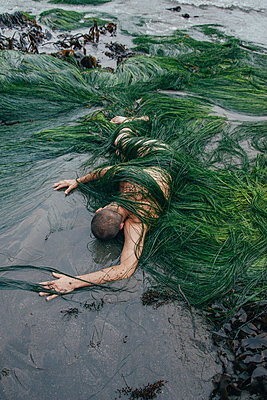 Body Washed up on Ocean Shore - p1262m1125268 by Maryanne Gobble