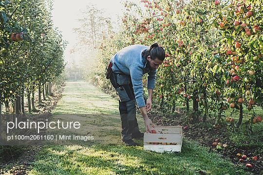 p1100m2061160 von Mint Images