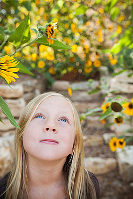 A child, a young girl looking up at a sunflower in a flower garden. - p1100m875882f by Norah Levine
