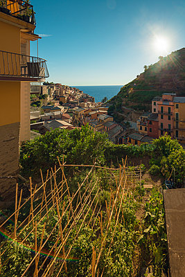 Italy, Manarola, view to the village - p300m1175920 by Ophelia photography