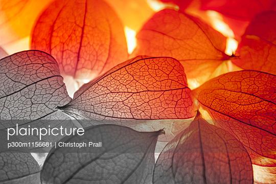 p300m1156681 von Christoph Prall