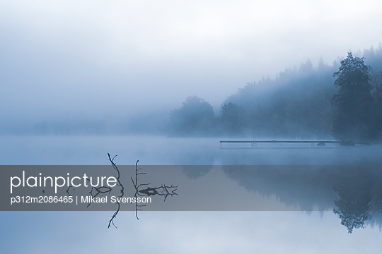 Lake in morning fog - p312m2086465 by Mikael Svensson