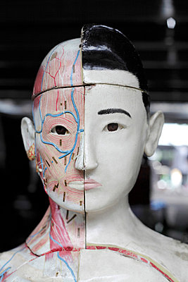 Anatomy doll - p265m815512 by Oote Boe