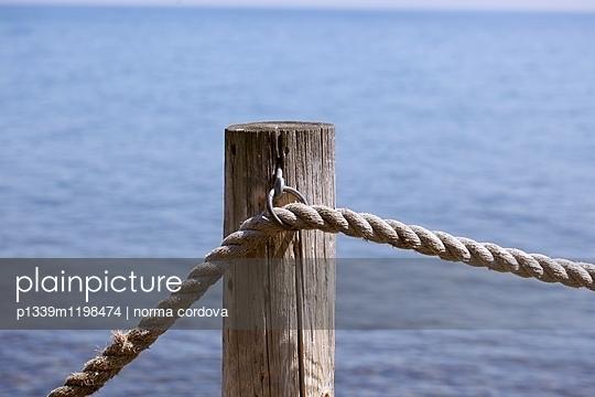 Seil - p1339m1198474 von norma cordova