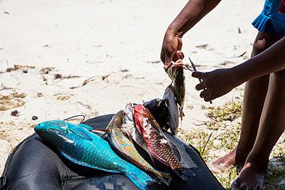 Fischfang - p1272m1515624 von Steffen Scheyhing