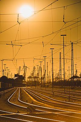 Güterbahnhof Veddeler Damm, Hafen Hamburg - p1493m1584665 von Alexander Mertsch