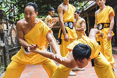 Vietnam, Hanoi, men exercising kung fu - p300m2013206 by William Perugini