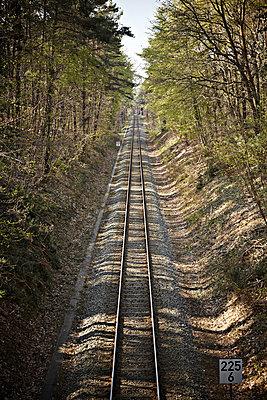 Bahngleise im Wald - p1092m1112970 von Rolf Driesen
