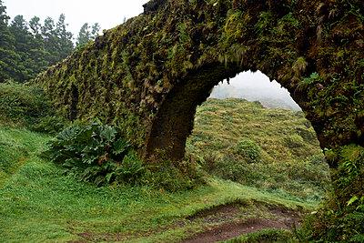 alte Brücke mit Moos - p1146m2057668 von Stephanie Uhlenbrock