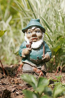 Zwerg im Garten - p1650487 von Andrea Schoenrock