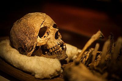 Mummy - p1007m886835 by Tilby Vattard