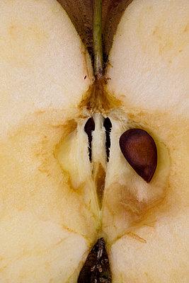 Kerngehäuse eines Apfels Nahaufnahme - p647m1113105 von Tine Butter