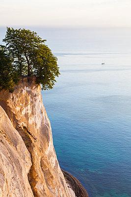 Denmark, Mon Island, Mons Klint, Chalk cliffs - p300m1166666 by Werner Dieterich