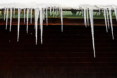 Icicles on a drainpipe in front of a house wall - p1312m2186057 by Axel Killian