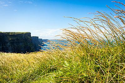 Cliffs of Moher - p815m1503502 von Erdmenger
