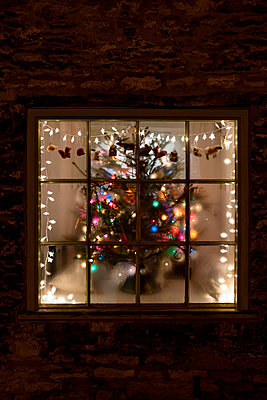 Window with christmas decoration - p1057m2149469 by Stephen Shepherd