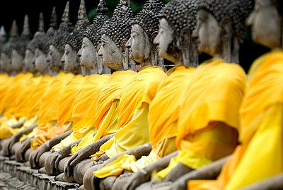 Buddha statues, Ayuthaya, Thailand, Southeast Asia, Asia - p8712762 by Rod Porteous