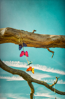 Model butterflies on string tied to dead tree branches against blue sky with plane trails - p1047m2126864 by Sally Mundy