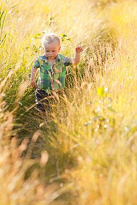 Caucasian boy walking in tall grass - p555m1411548 by John Lee