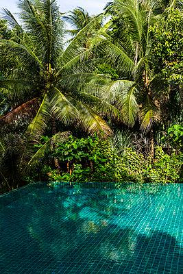 Tropisch - p1271m1590323 von Maurice Kohl