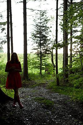 In the forest - p454m1176856 by Lubitz + Dorner