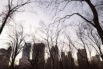 Central Park - p5690256 by Jeff Spielman