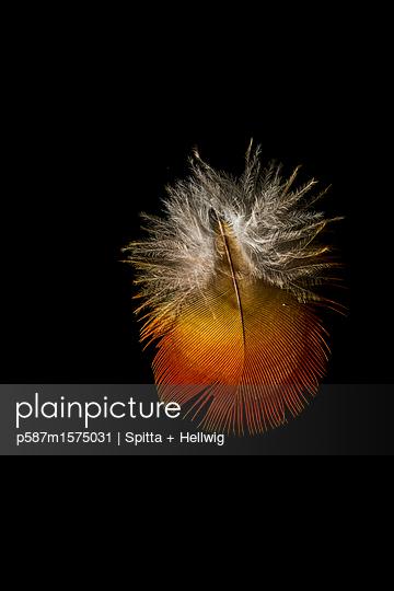 p587m1575031 by Spitta + Hellwig