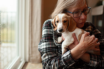 Senior hugs her new dachshund puppy tightly at home next to window - p1166m2137721 by Cavan Images