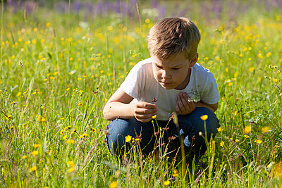 Boy discovering flowers in meadows - p429m2145751 by Tiina & Geir