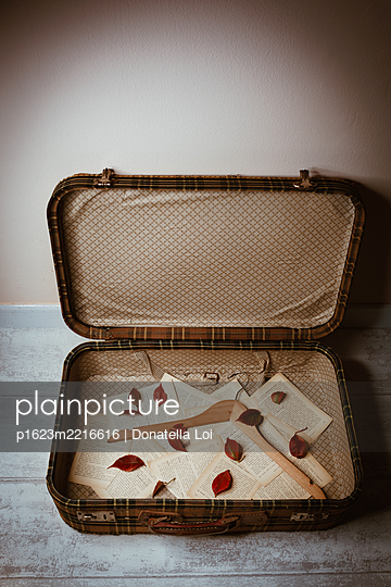 Autumn suitcase - p1623m2216616 by Donatella Loi
