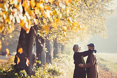 Affectionate couple in sunny autumn park - p1023m1402943 by Paul Bradbury