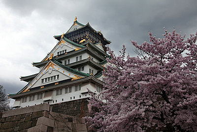 Himeyi White Castle fortress Kyoto - p664m1132593 by Yom Lam