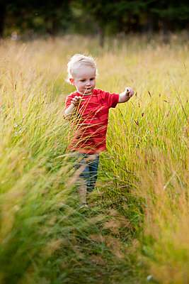 Caucasian boy playing in tall grass - p555m1411550 by John Lee