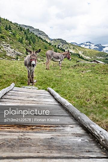 p713m2122578 by Florian Kresse