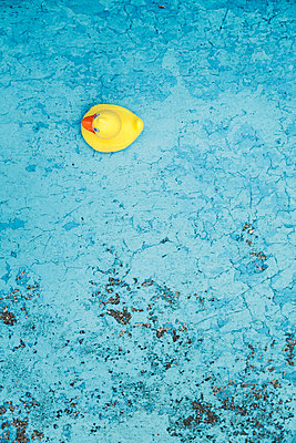 Empty pool - p1006m891386 by Danel