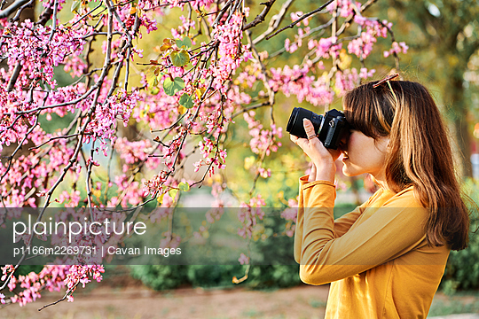 Young girl taking photos of pink tree flowers in the park in spring - p1166m2269731 by Cavan Images